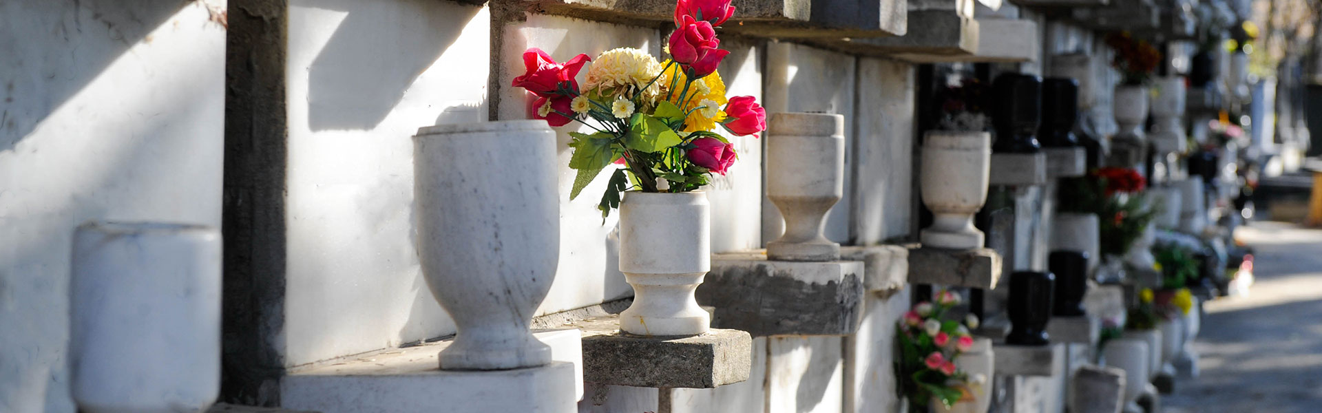 Biodegradable Urns